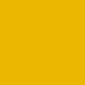 Żółty RAL 1021