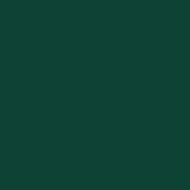 Zielony RAL 6005