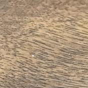 złoty dąb woodgrain